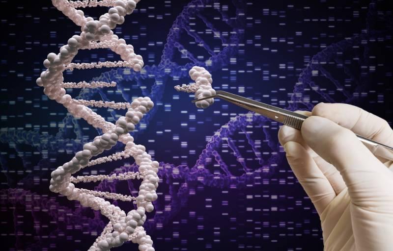 Российские биологи анонсировали проект по редактированию генома растений