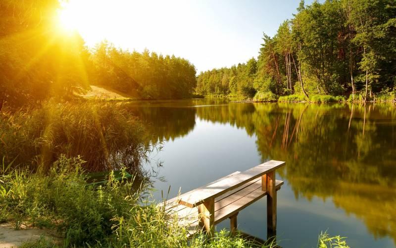 В Духов день в воду не гляди и в лес не ходи: традиции народного праздника